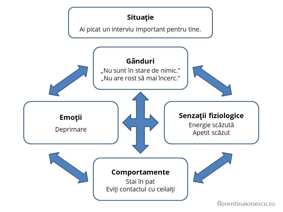 Schemă cu elementele componente ale emoţiei de deprimare